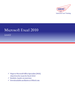 Excel 2010 Level 2