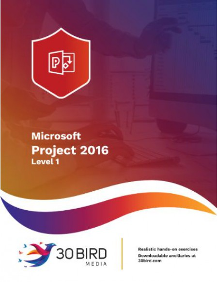 Project 2016/2013 Level 1