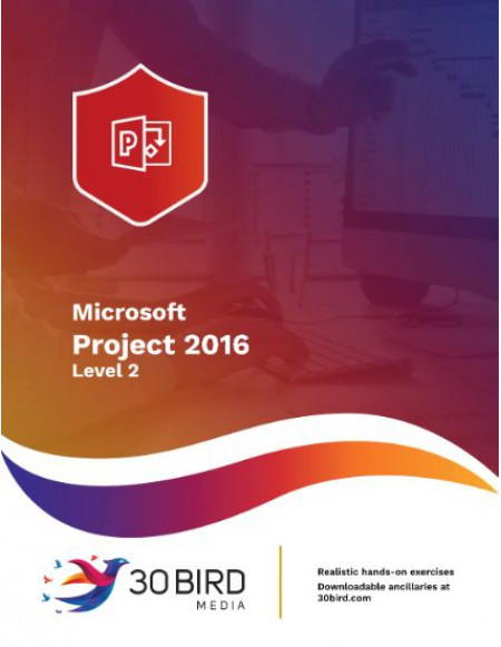 Project 2016/2013 Level 2